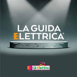 GLI ELETTRICI Guida Elettrica 2020